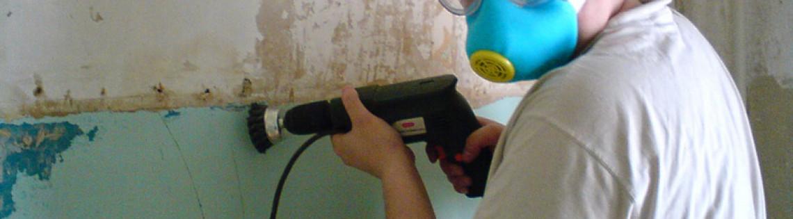 'Как предотвратить шелушение нанесённой на стену краски после засыхания