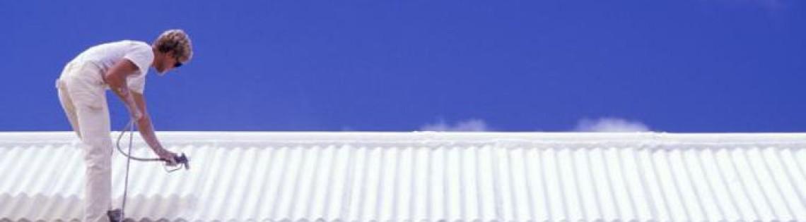 'Выбор лакокрасочных материалов и правила окрашивания шиферной крыши