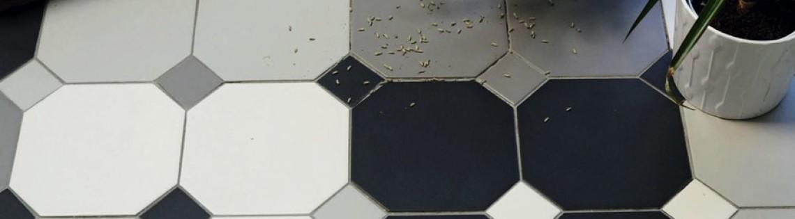 'Особенности и нюансы использования двухкомпонентных клеев для плитки