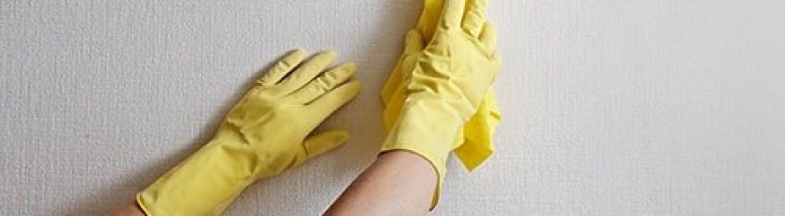 'Свойства, описание и правила выбора моющейся краски