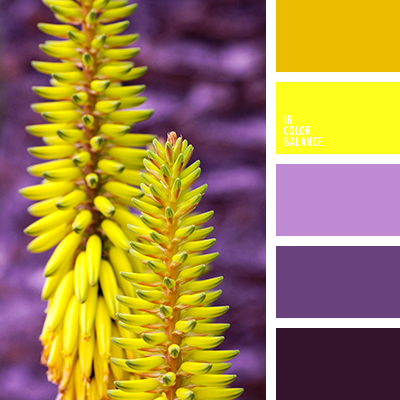 лавандовый с яркими цветами