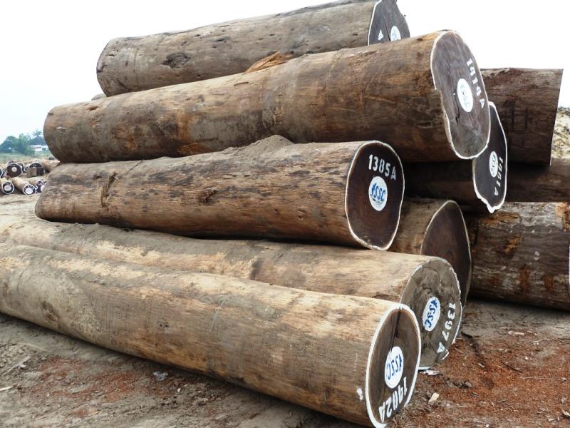 древесина